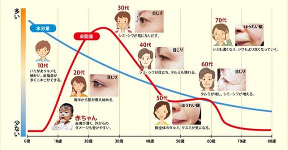 肌の老化の原因